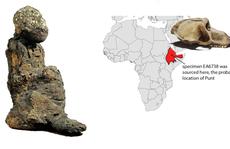 Xác ướp không phải con người tiết lộ 'đất châu báu' đầy vàng 3.000 năm