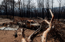 Cảnh báo đáng sợ về biến đổi khí hậu
