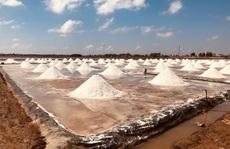 Nghề làm muối ở Bạc Liêu: Di sản văn hoá phi vật thể quốc gia