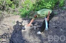 Để xảy ra phá rừng, kiểm lâm địa bàn bị 'kiểm điểm rút kinh nghiệm'