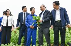 Nông nghiệp cần 'cởi trói' chính sách