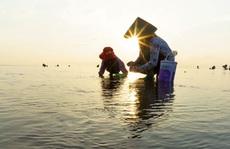 Cuộc thi ảnh 'Nét đẹp lao động': Góp sức cho đời