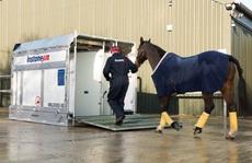 Choáng với tiền thưởng 'khủng' của giải đua ngựa lớn nhất thế giới