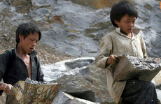 520.000 trẻ em làm việc nặng nhọc, độc hại, nguy hại