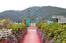 Cận cảnh vườn thượng uyển bay 'khổng lồ' không phép ngay cửa ngõ Đà Lạt