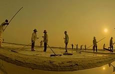Cuộc thi ảnh 'Nét đẹp lao động': Bàn tay ta làm nên tất cả