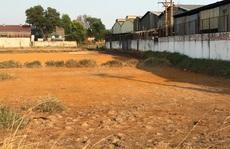 CLIP: Kỳ lạ cánh đồng vàng như gạch, người dân không dám xuống ở Hóc Môn