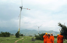 Đua làm điện gió để hưởng giá tốt