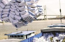 Để nông sản Việt giảm phụ thuộc thị trường Trung Quốc – Bài học từ gạo