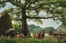Làm dày thêm văn hóa Việt trong phim