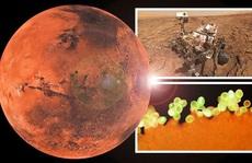 Phát hiện 'vật liệu sự sống' của trái đất trên một hành tinh khác