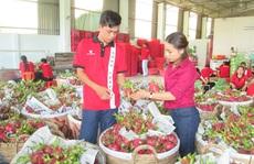 Quý I, nông sản xuất siêu 2,9 tỉ USD