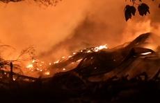 Tìm doanh nghiệp tiêu huỷ hơn 10.000 tấn hạt điều bị cháy