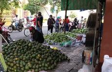 Nông sản xuất sang Trung Quốc lại ùn ứ