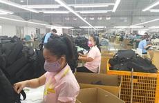 Tiền Giang: Nhiều công ty tạm ngừng hoạt động do thiếu nguyên liệu