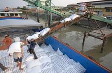 Đề nghị xử lý doanh nghiệp khai khống để giữ hạn ngạch xuất khẩu gạo