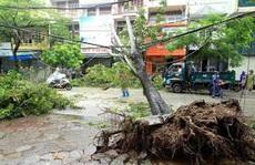 Điện lực TP HCM khuyến cáo người dân đề phòng tai nạn điện khi trời mưa