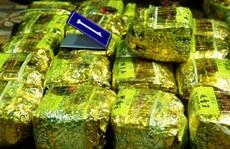 Chủ mưu trong đường dây vận chuyển hơn 307kg ma túy là ai?
