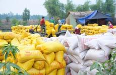 Hải quan tiếp nhận mở tờ khai gạo tồn ở cảng từ 0 giờ ngày 25-4