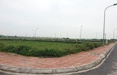 Đường 'Nhuệ' thao túng đấu giá đất ở Thái Bình