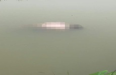 Phát hiện thi thể người đàn ông đang phân hủy nổi trên kênh nước