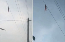 Indonesia: Bé gái treo trên dây cáp điện cao 15 m