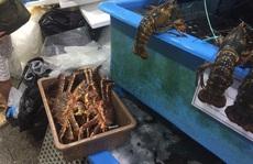 Thủy hải sản 'nhà giàu' giảm giá tới 50% vẫn ế