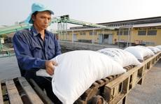 Địa phương 'bắt bẻ' Bộ Công Thương vì sao lại áp hạn ngạch xuất khẩu gạo?