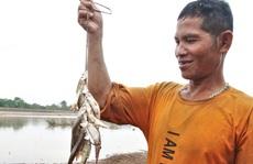 Xem người Pa Kô bắt cá dùng loại bẫy có từ trăm năm trước