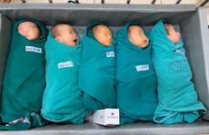 5 bé sơ sinh chào đời trong khu cách ly Bệnh viện Bạch Mai