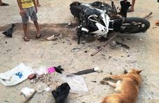 Đi trộm chó bị phát giác, 'cẩu tặc' dùng dao chém người trọng thương