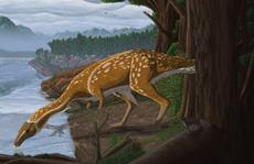 'Quái vật' 110 triệu tuổi càng già càng biến hình kinh ngạc