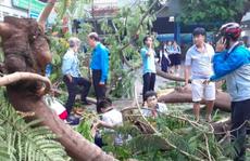 Bác sĩ 'thở phào' khi 2 học sinh bị cây phượng bật gốc đè đã tỉnh sau phẫu thuật