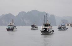 Việt Nam: Quốc gia chiến thắng hiếm hoi thời đại dịch