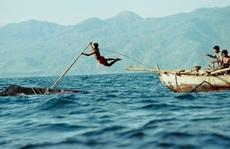 Nghề săn cá voi bằng lao tre hàng trăm năm
