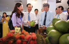 TP HCM bắt tay các tỉnh Đông Nam Bộ ra mắt 3 tour mới, giá ưu đãi
