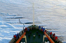 Mỹ muốn 'lấy lòng' NATO để chặn Trung Quốc tại Bắc Cực?