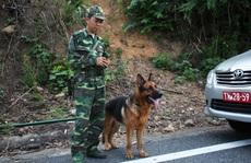 Cục Điều tra Hình sự Bộ Quốc phòng vào cuộc truy bắt kẻ giết người vượt ngục