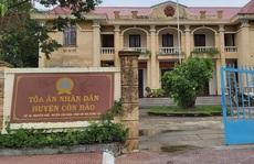 Kỷ luật Chánh án TAND huyện Côn Đảo vì can thiệp để mẹ vợ bao chiếm đất rừng