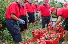 Doanh nghiệp nội chặn đà sụt giảm xuất khẩu