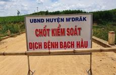 Thêm nhiều trường hợp mắc bạch hầu, Đắk Lắk cách ly hàng ngàn người dân