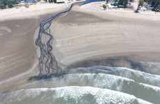 CLIP: Cảnh nước thải từ trang trại nuôi tôm biến bãi biển thơ mộng thành 'biển chết'
