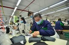 Nỗ lực tạo việc làm cho người lao động