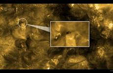 Hết hồn hình ảnh sinh vật 'bất tử' của Trái Đất trên… Mặt Trời
