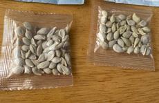 Trung Quốc nói không biết gì về hạt giống lạ gửi đến Mỹ