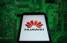 Mỹ cảnh báo hợp tác với Huawei sẽ phải trả giá