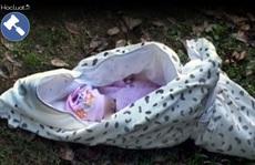 Vứt bỏ con mới đẻ, chịu trách nhiệm ra sao?