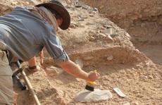 Kinh ngạc vóc dáng 'nam thần' của… loài người tuyệt chủng 2 triệu tuổi