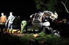 Bình Thuận: Khởi tố tài xế giao xe cho phụ lái, gây tai nạn thảm khốc, làm 8 người chết