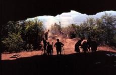 Phát hiện 'chốn chăn gối' xưa nhất thế giới, đầy sinh vật tuyệt chủng bao vây